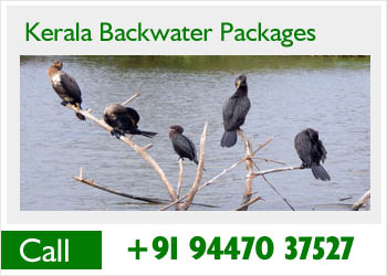 keralabackwaterpackages-vaikom